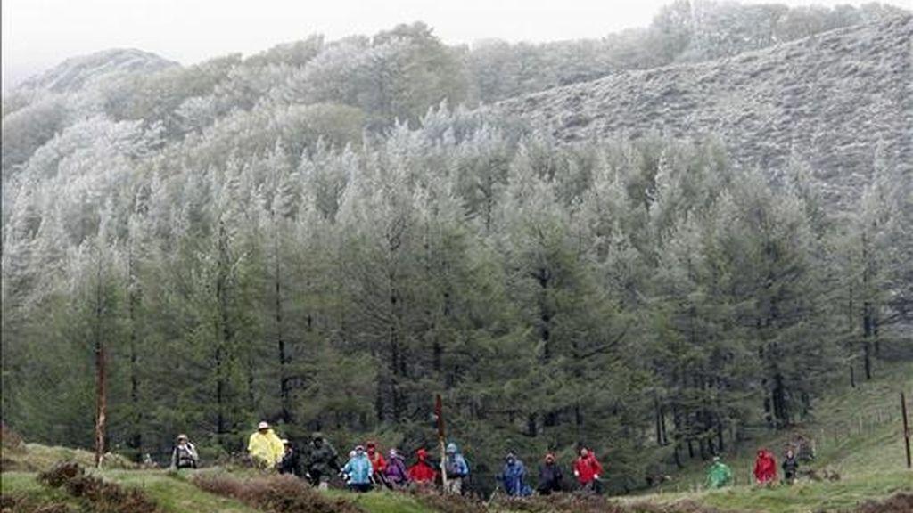 Un grupo de peregrinos recorren el camino de Santiago. EFE/Archivo