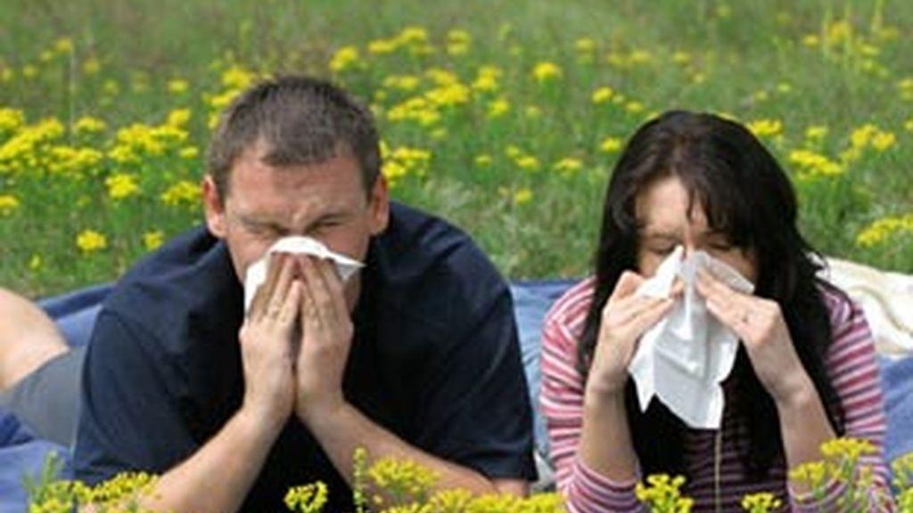 La medicina natural y una adecuada alimentación mejoran los síntomas alérgicos.
