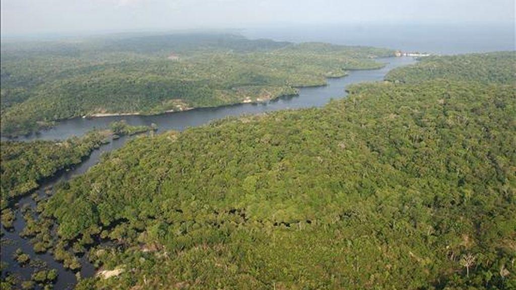 La Amazonia brasileña. EFE/Archivo