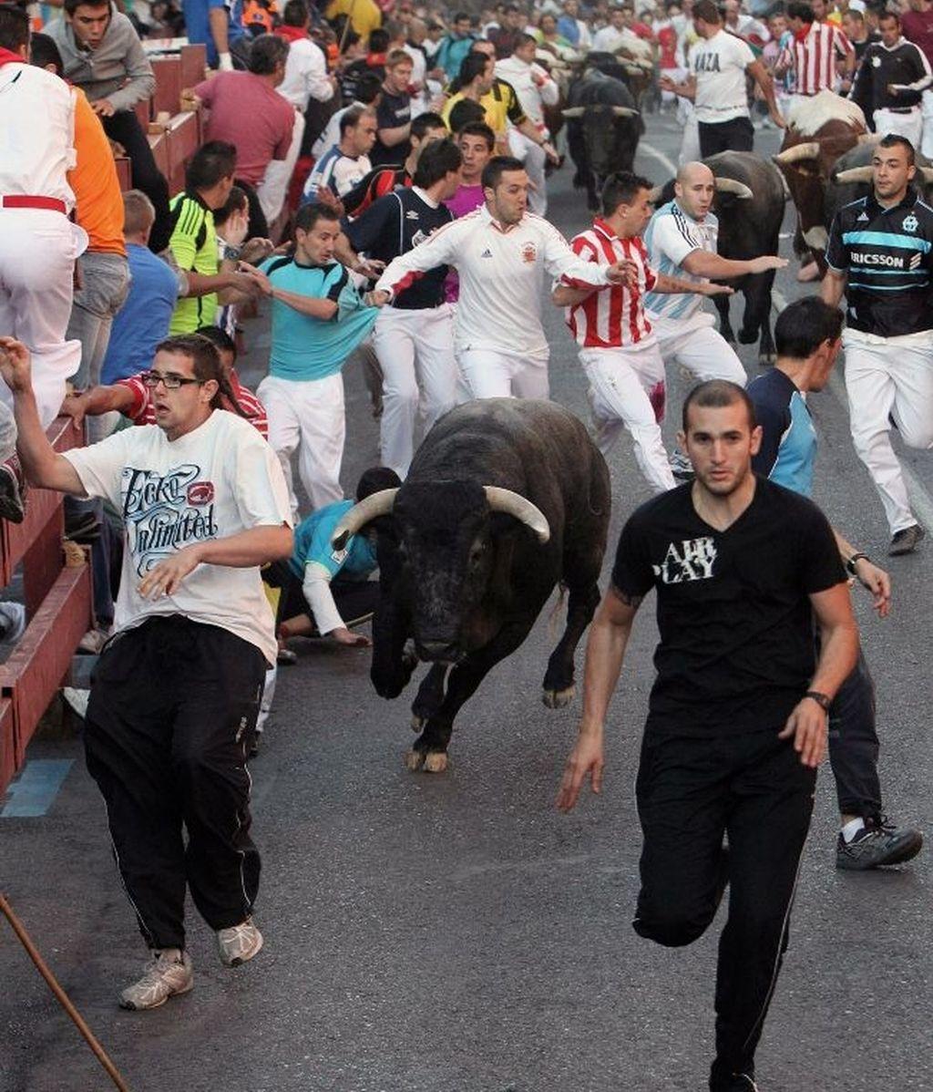 Varios contusionados en un encierro durante las fiestas de San Sebastián de los Reyes. Foto: Efe.
