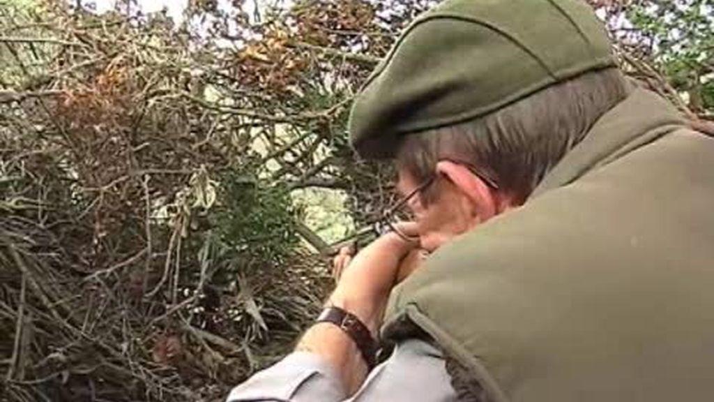 Los cambios en la caza