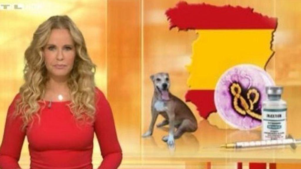 Cadena alemena RTL
