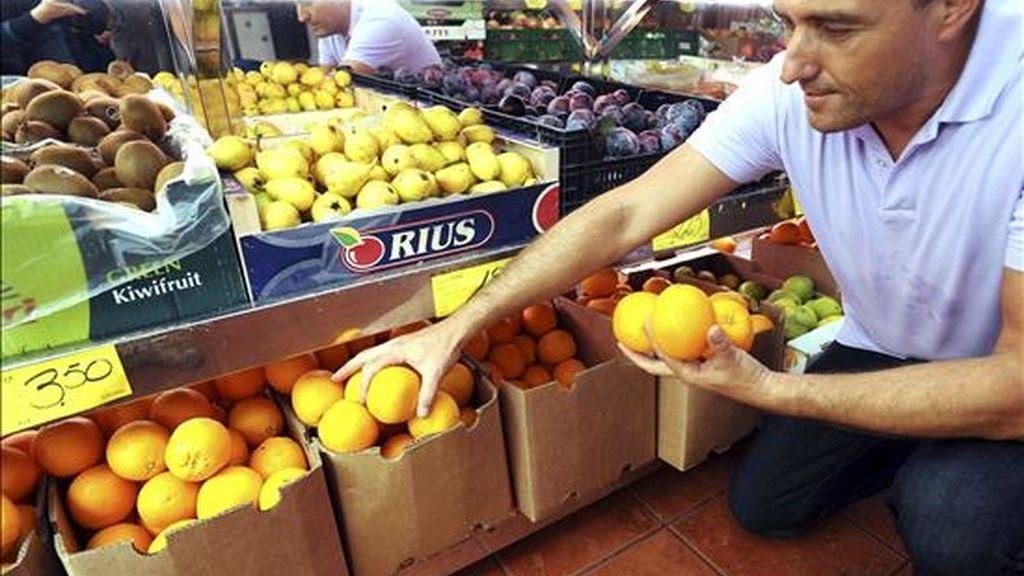 Un hombre arregla las naranjas en una frutería. EFE/Archivo