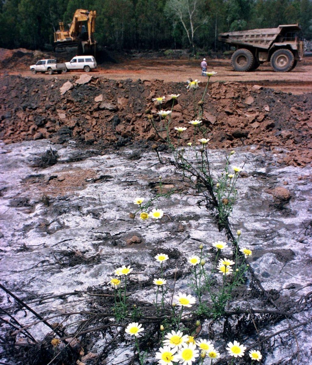 Residuos después del vertido de Aznalcóllar (Sevilla) en 1998