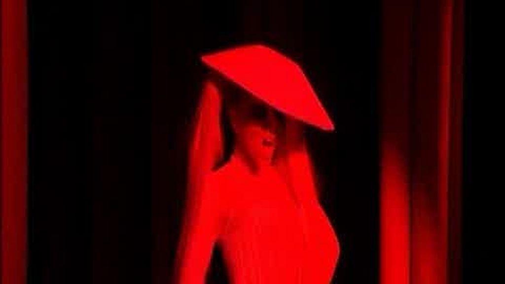 Lady Gaga, modelo