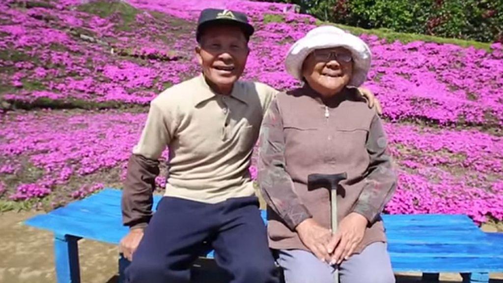 Plantó un jardín entero de flores rosas para alegrar a su mujer