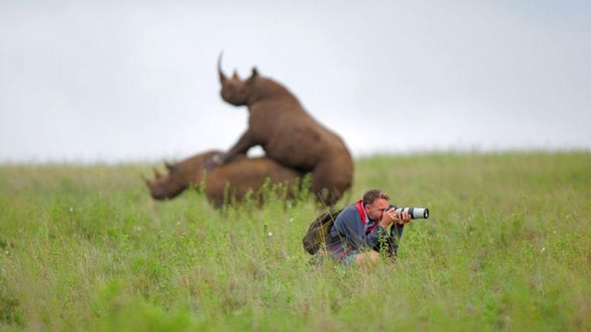 Fotógrafo y rinocerontes
