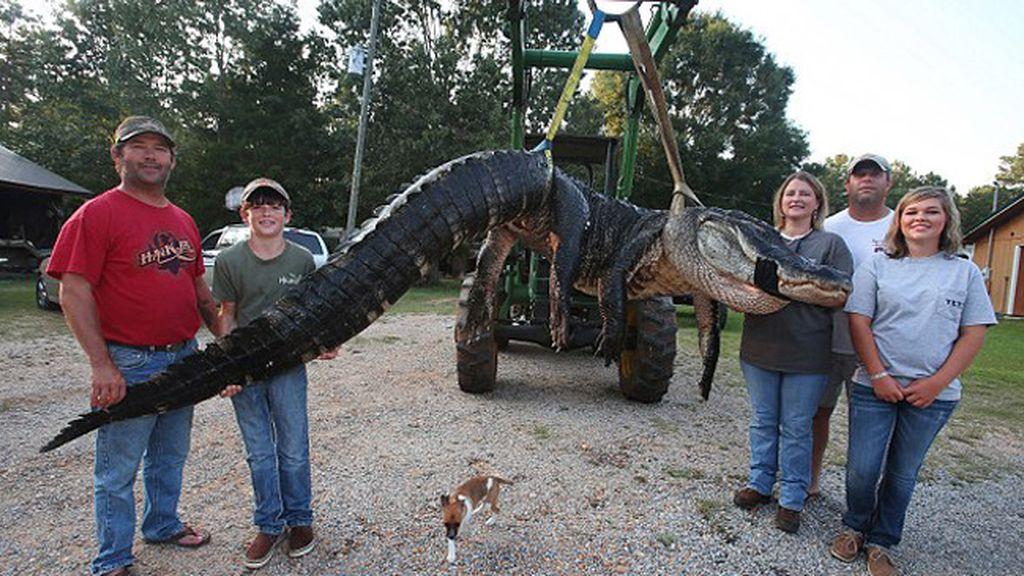 Capturan al cocodrilo más grande antes visto