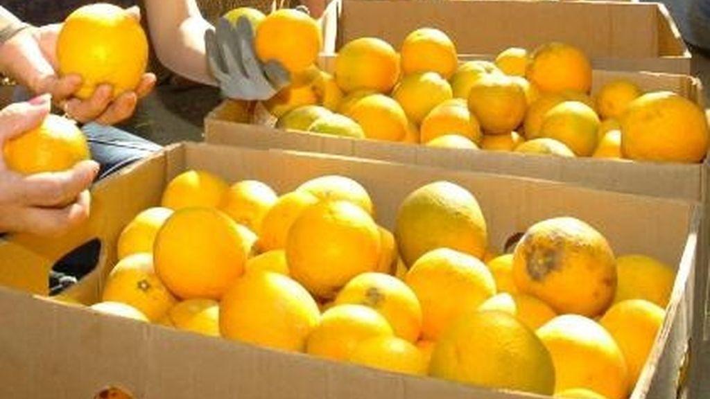 Naranjas, vitamina C