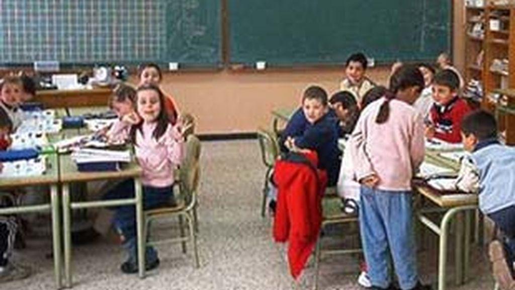 En España los contenidos relacionados con la sexualidad vienen recogidos en Educación para la Ciudadanía.