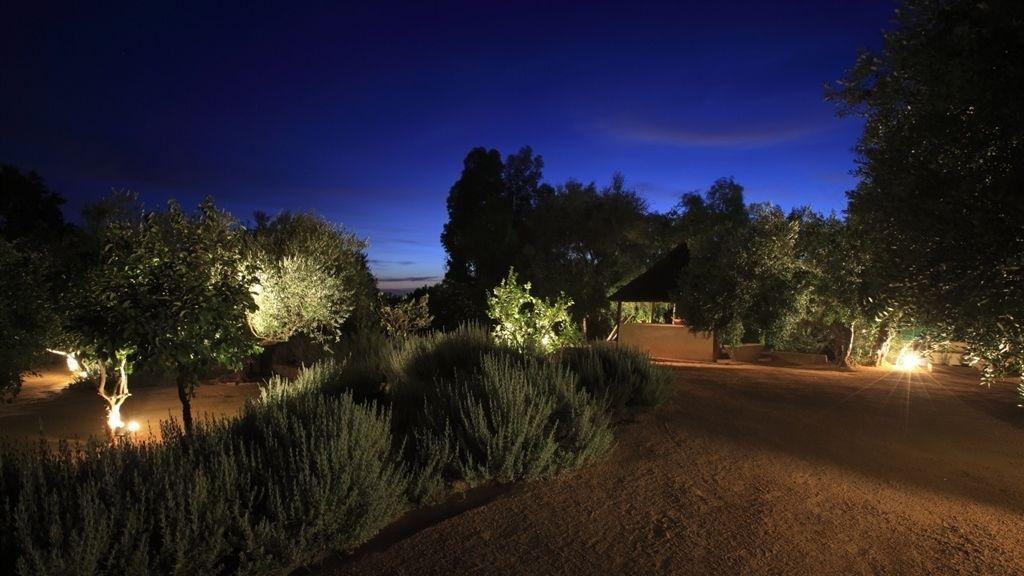 Desconectar entre jardines iluminados