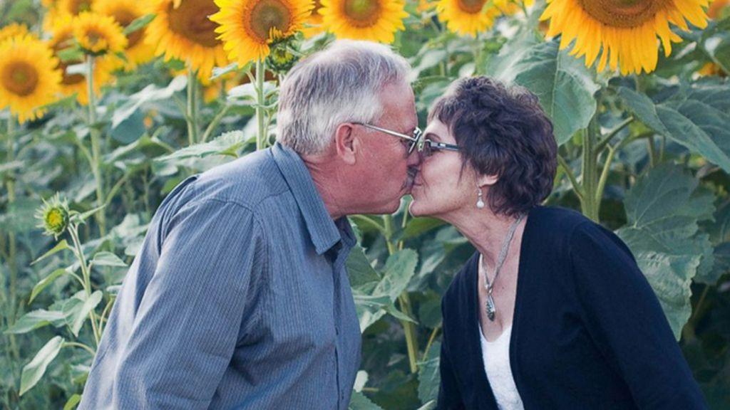 Planta seis kilómetros y medio de girasoles en homenaje a su mujer fallecida de cáncer