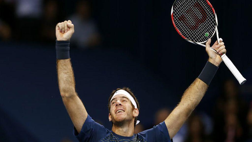 Del Potro vence a Federer en Basilea por segundo año consecutivo