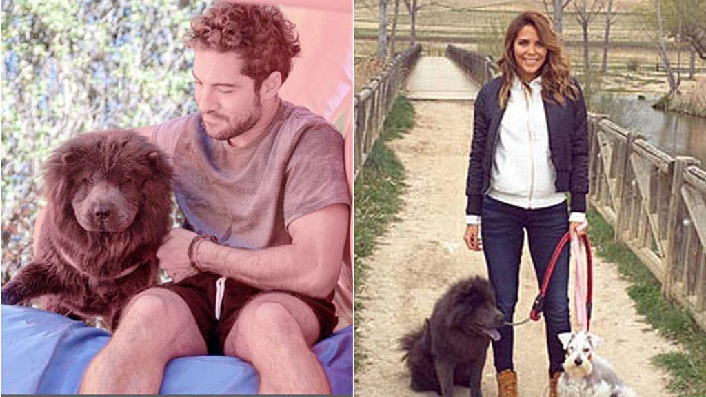 Ha protagonizado varias telenovelas y tiene 53 mil seguidores en Instagram