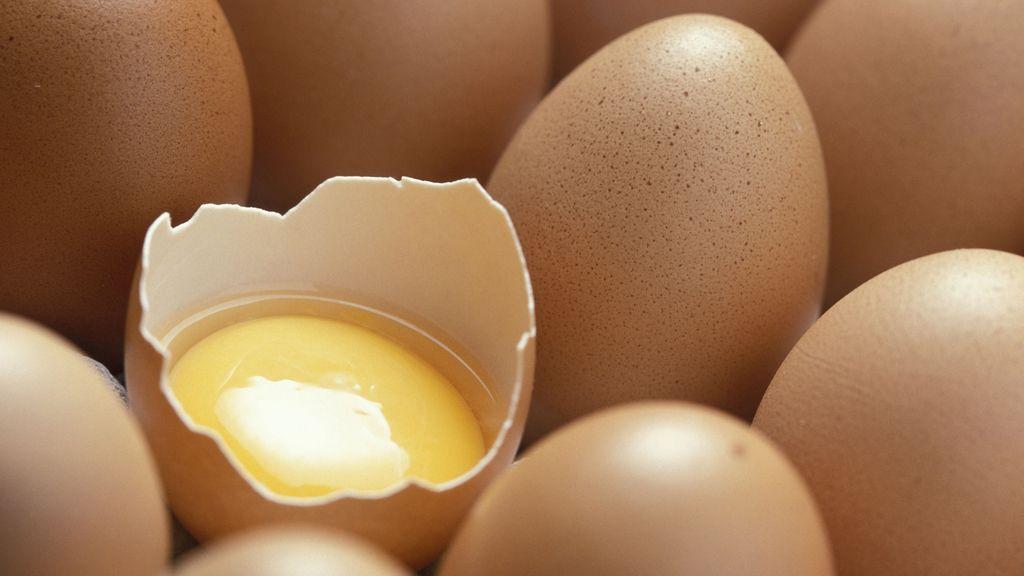 Los huevos aumentan la memoria