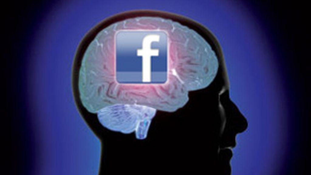 Los investigadores usaron imágenes por resonancia magnética para estudiar los cerebros de 125 estudiantes, todos ellos con más de 300 amigos en Facebook.