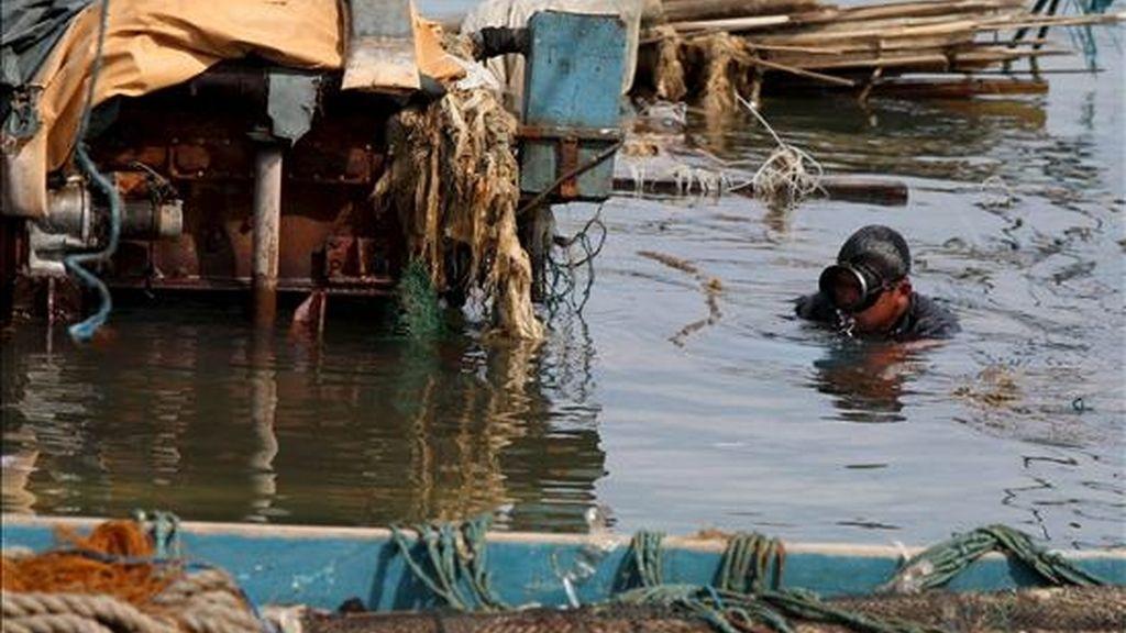 Un buceador de los servicios de rescate filipinos busca a pescadores desaparecidos en los alrededores de un barco de pesca hundido en la costa de la localidad de Mariveles, en la provincia de Bataan, oeste de Manila (Filipinas) el jueves, 15 de julio, un día después del paso del ciclón Conson. EFE