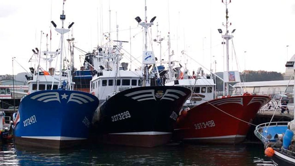 Barcos pesqueros amarrados