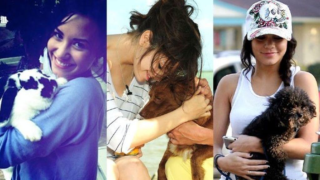 Las tres tienen pasión por sus mascotas
