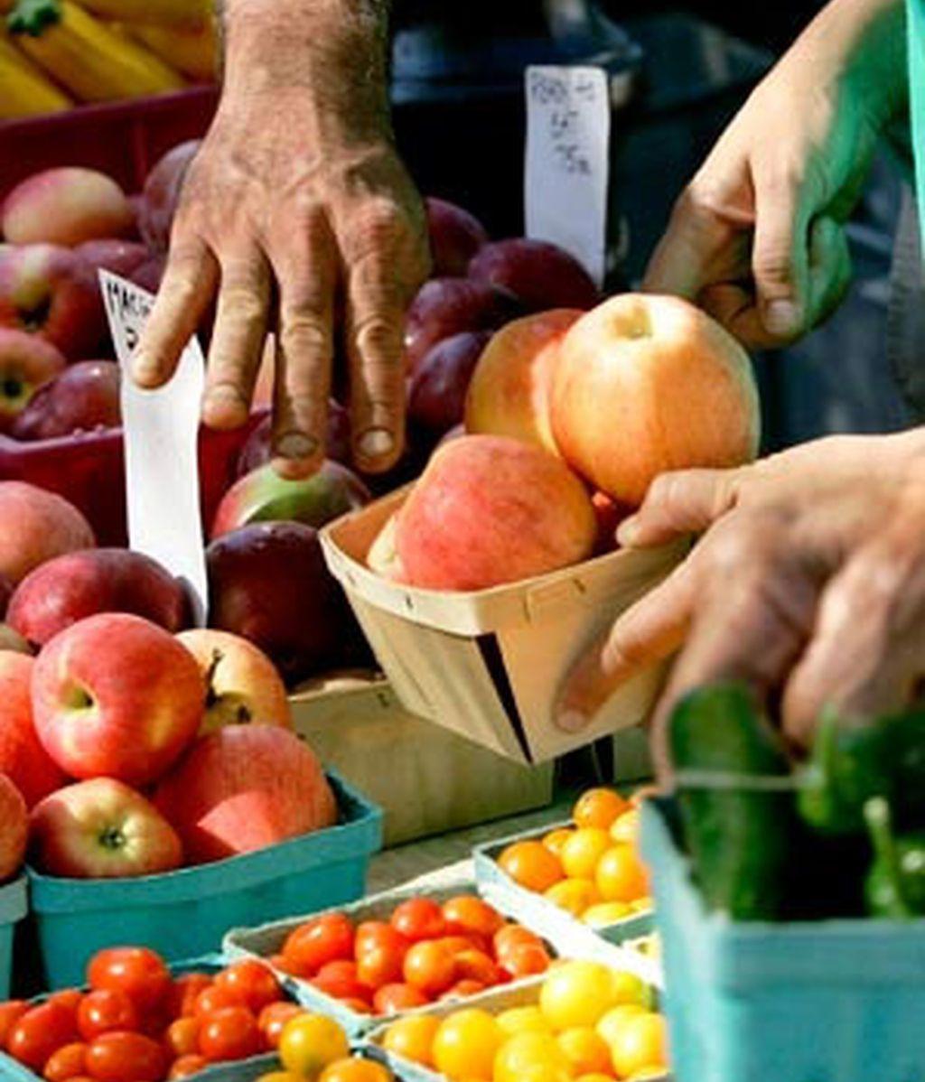Un alimento transgénico es aquel que ha recibido un material genético de otro organismo. Foto: AP.