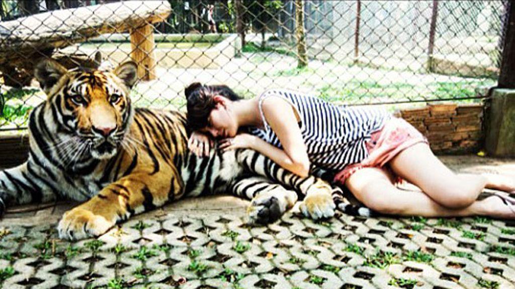 Blanca durmiendo con tigres