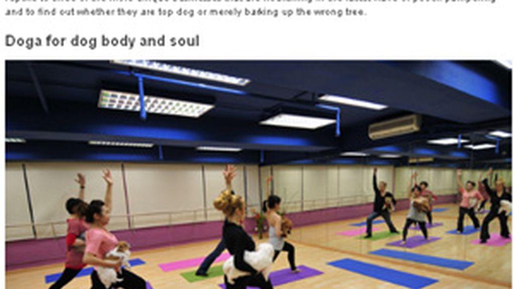 Las clases de doga han tenido buenos resultados. Foto: CNN