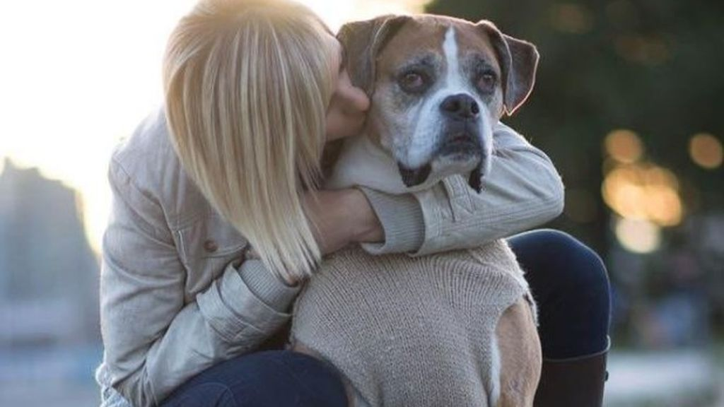 Cumple los últimos deseos de su perro enfermo de cáncer