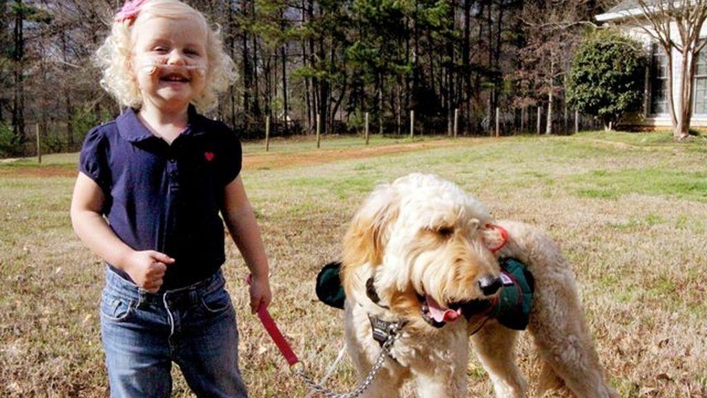 Con tres años, respira porque su perro le transporta el oxígeno