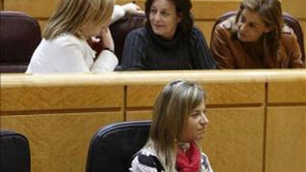 Aprobación de la Ley del Aborto en el Senado. Vídeo: Informativos Telecinco