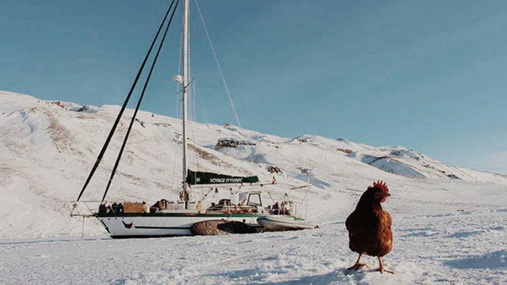 Un hombre da la vuelta al mundo...con su gallina