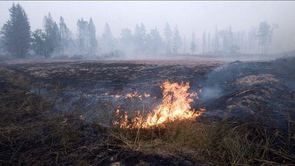 Un campo arde en la villa de Lovtsi, a las afueras de Moscú (Rusia). El Gobierno ordenó el envío de tropas del Ejército para combatir los incendios que  amenazan a una docena de ciudades y villas. EFE