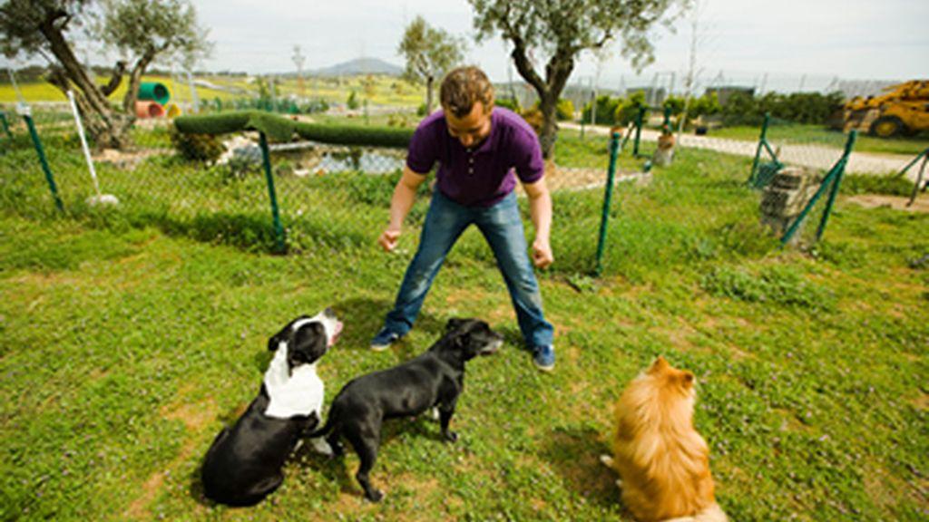 Borja Capponi entrenando perros