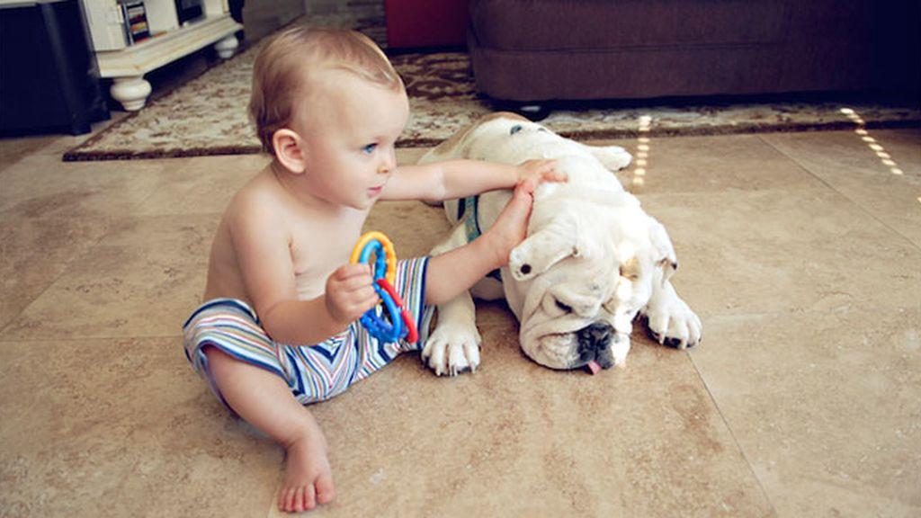Harper y Lola, amigos inseparables