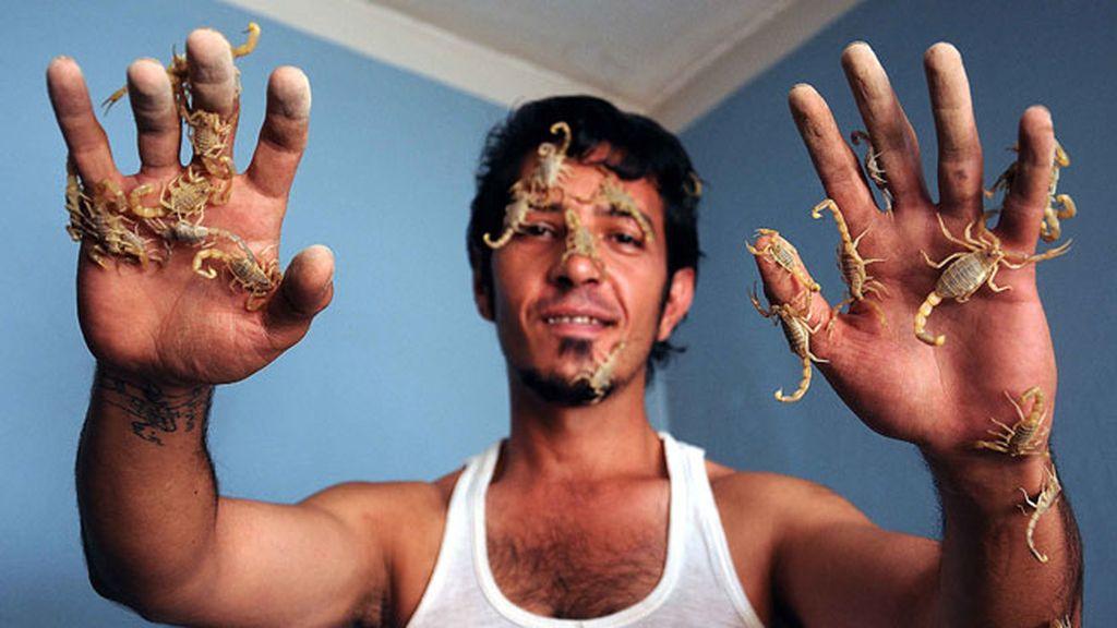 Un médico utiliza el veneno de los escorpiones para tratar a sus pacientes