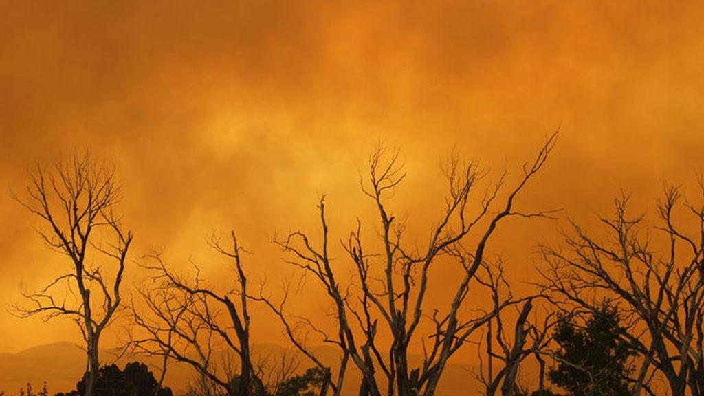 El incendio de Arizona está totalmente descontrolado.
