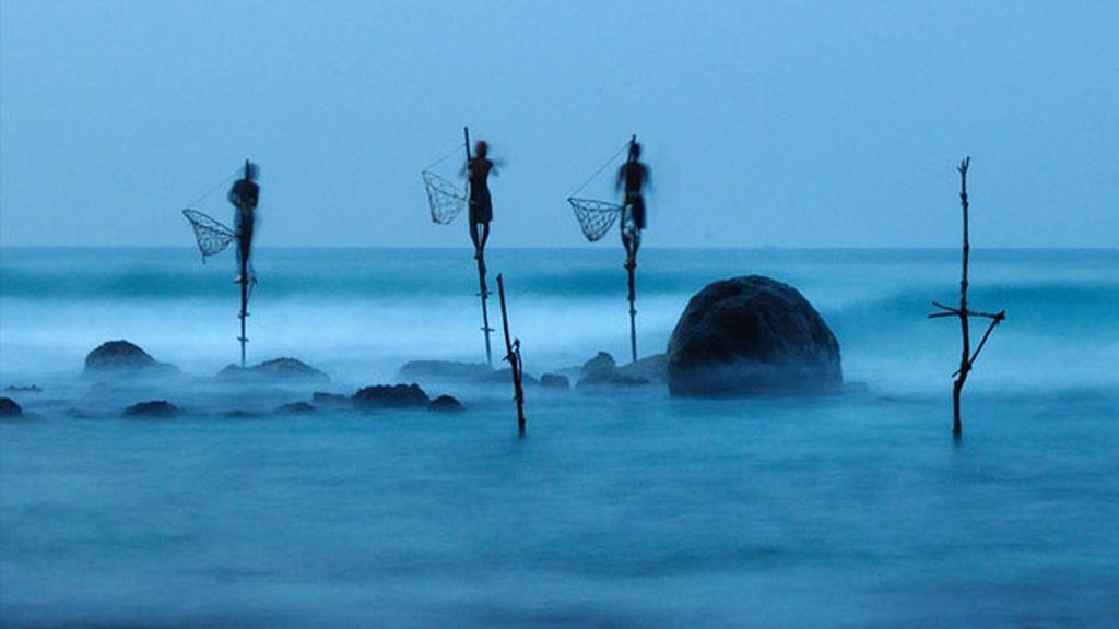 Pesca del zanco en Sri Lanka