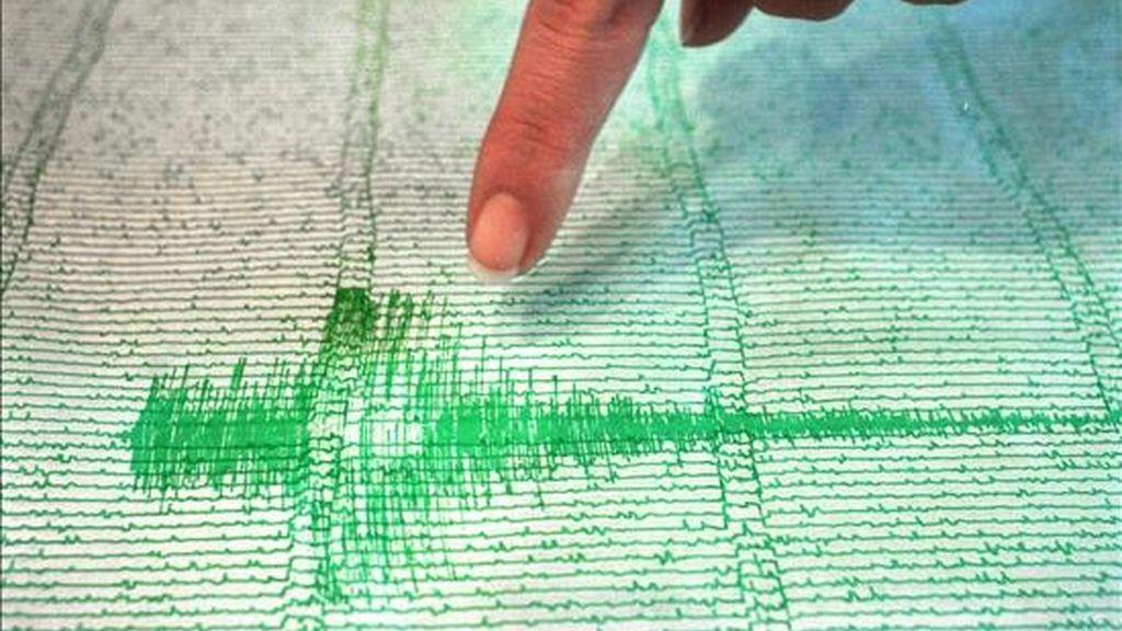 Imagen de un registro sismográfico. EFE/Archivo