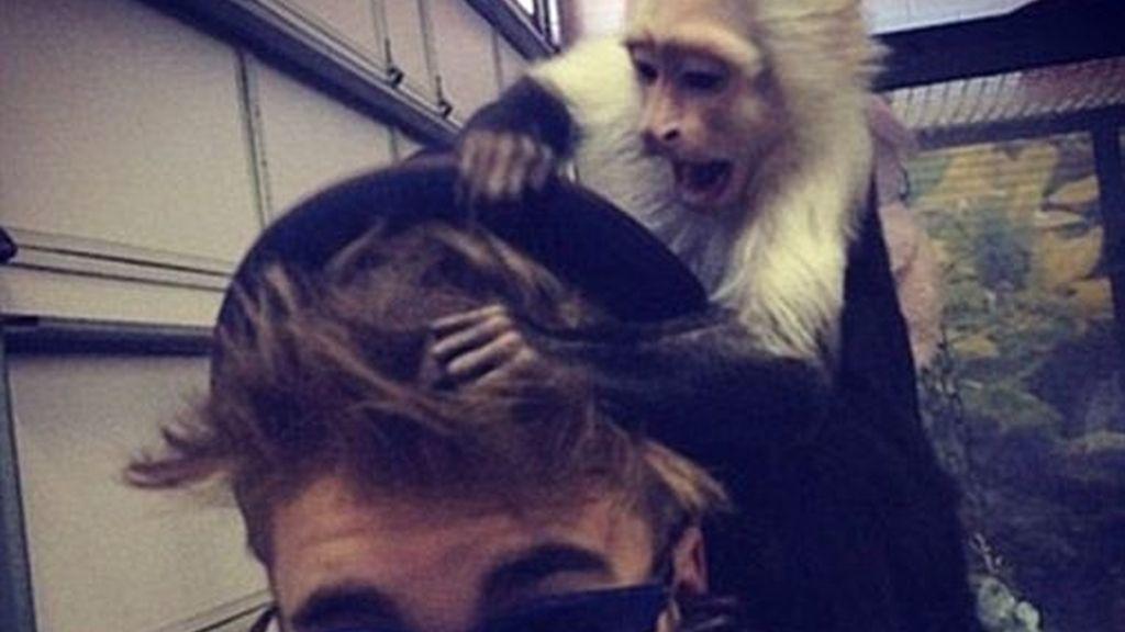 Justin Bieber, con su mono capuchino. Foto: Instagram