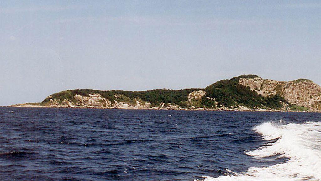 La Isla de Queimada Grande o Isla Serpiente
