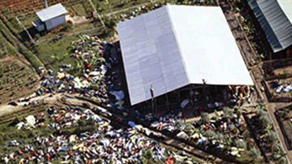 En un pueblo de Guyana se produjo un suicidio masivo en 1978, cuando los seguidores de la secta Templo del Pueblo, tomaron zumo de frutas mezclado con cianuro. Hubo 913 muertes