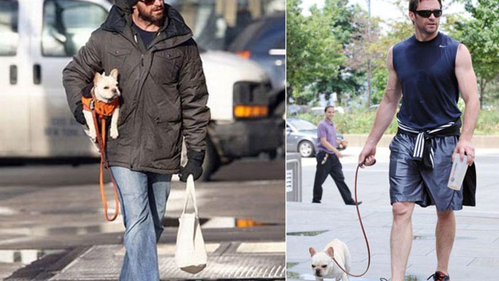 Hugh Jackman, entre perro y lobo