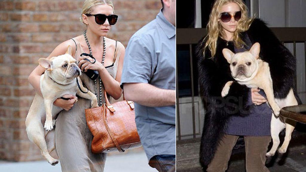 Ashley Olsen, no sin su 'frenchie'