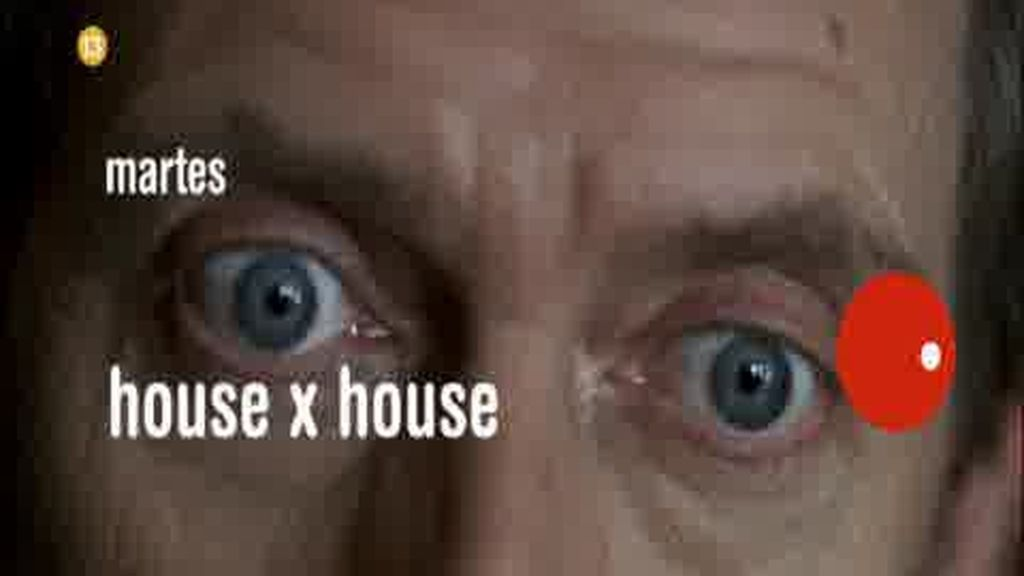 Promo House: House visto por House