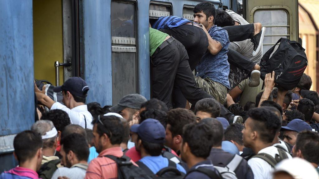 Varios inmigrantes intentan llegar a Serbia