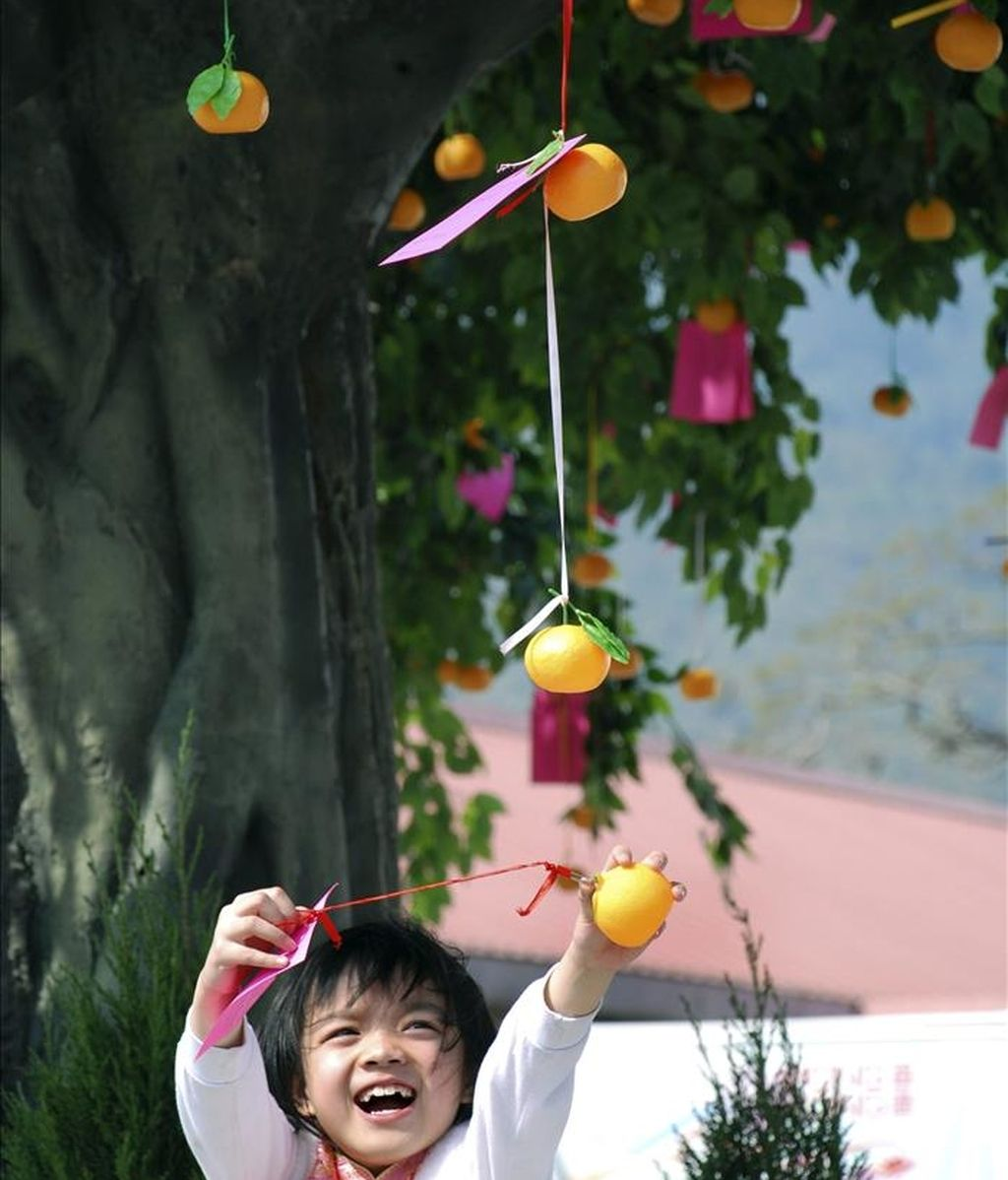 El Año Nuevo Chino en Hong Kong es una de las pocas fechas del calendario que consigue ralentizar la frenética actividad de ex colonia británica, una cita durante la cual poblados con raíces centenarias recuperan y celebran tradiciones para propios y extraños. En la imagen, un padre eleva a su hijo para colgar su deseo en el Arbol de los Deseos del pueblo hongkonés de Lam Tsuen. EFE