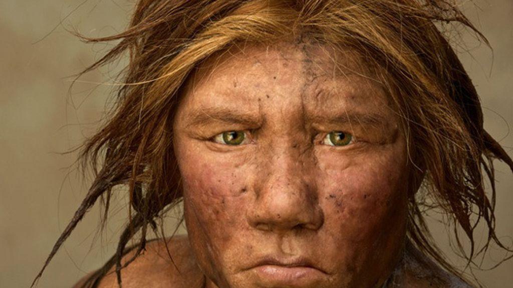 humano, hombre primitivo, neandertal, neanderthal