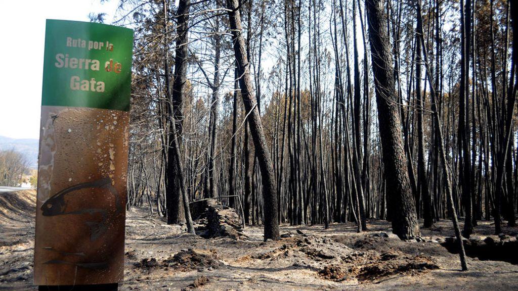 El incendio de la Sierra de Gata afecta a un gran número de espacios protegidos