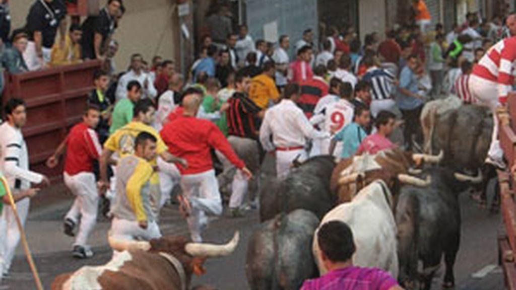 Varios mozos corren delante de los toros de la ganadería de Victorino Martín durante el segundo encierro de las fiestas patronales del madrileño municipio de San Sebastián de los Reyes. Foto: EFE