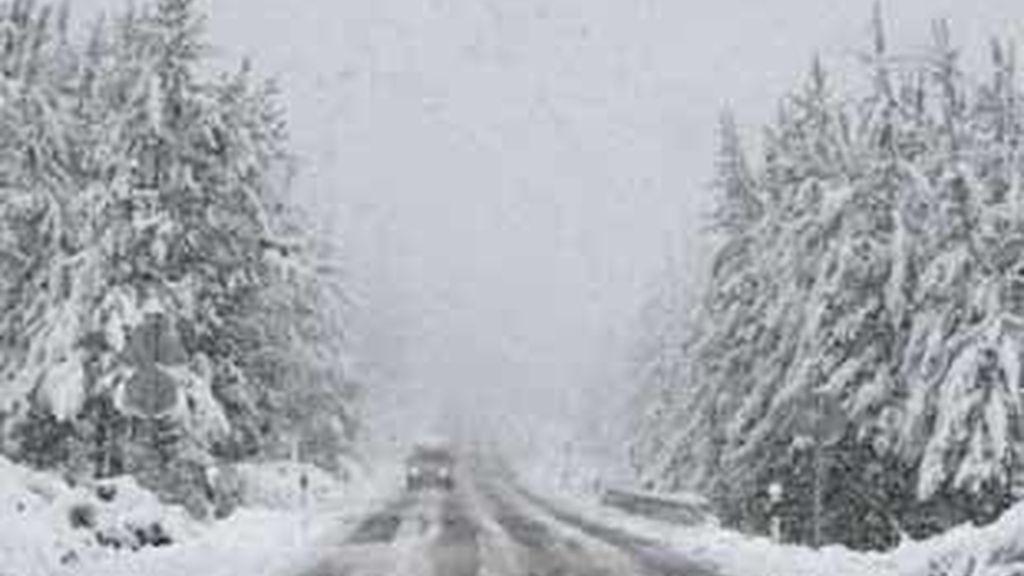 Con las fuertes nevadas, quizá hemos olvidado los perjuicios que los grandes vertidos de sales han provocado en el medio urbano y rural. Foto: EFE