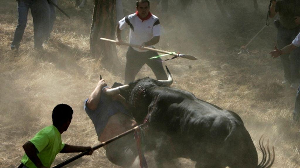 Torneo de la Vega en Tordesillas